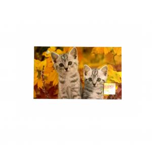 Zerbino digitale 45x75 con 2 gattini