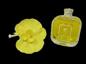 HYPNO profumatore orchidea Pompelmo  100ml