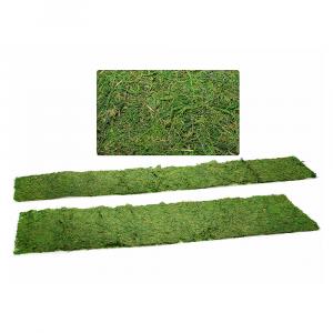 Set due strisce di muschio naturale decorativo essiccato