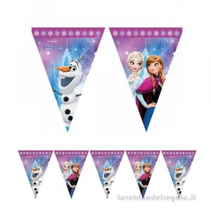 Ghirlanda bandierine Frozen Northen Lights Compleanno bimba 2.30mt - Party allestimento
