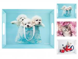 Vassoio In Melamina Cats&dogs 38x51 58031rh