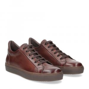 Griffi's sneaker 1053 pelle marrone