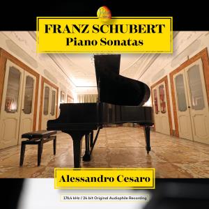 FRANZ SCHUBERT, PIANO SONATAS - box 5CD