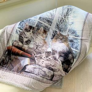 Coperta stampa digitale gattini singola