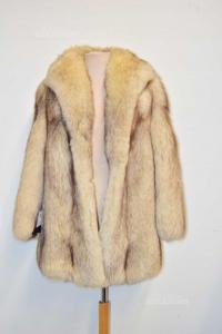 Fox Fur,furrier Milani San Donà Of Piave