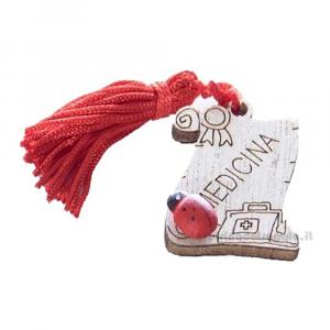 Magnete Pergamena Medicina con nappina Rossa e coccinella in legno 3.5 cm - Bomboniera laurea
